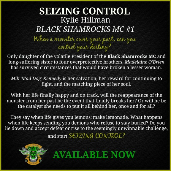 Seizing Control Blurb